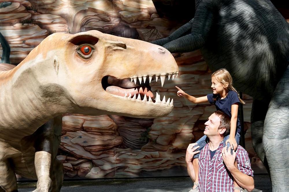 Dinosaurier Park 1