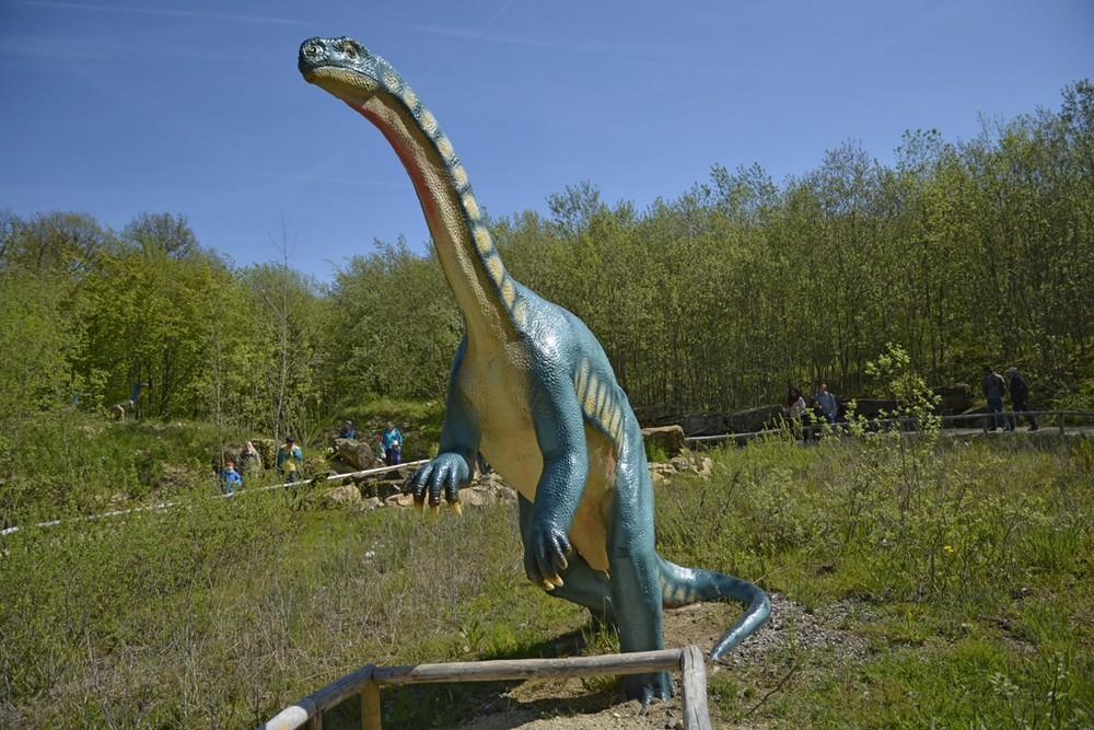 Dinosaurier Park 5