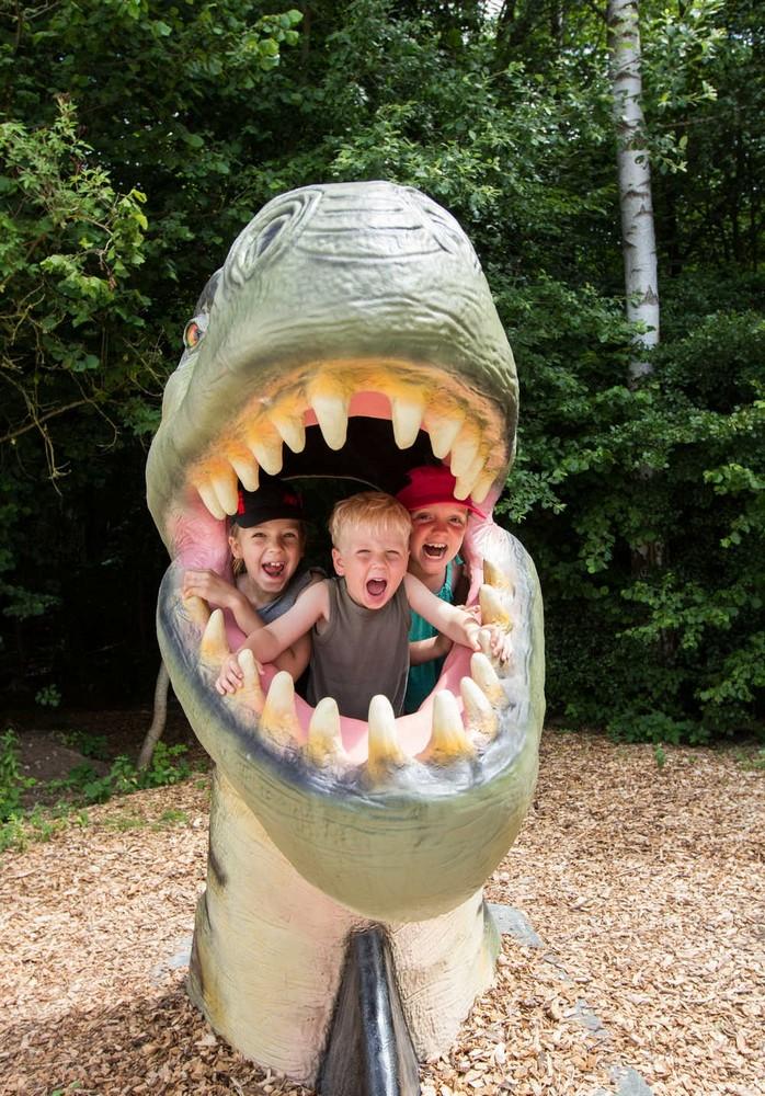 Dinosaurier Park 8