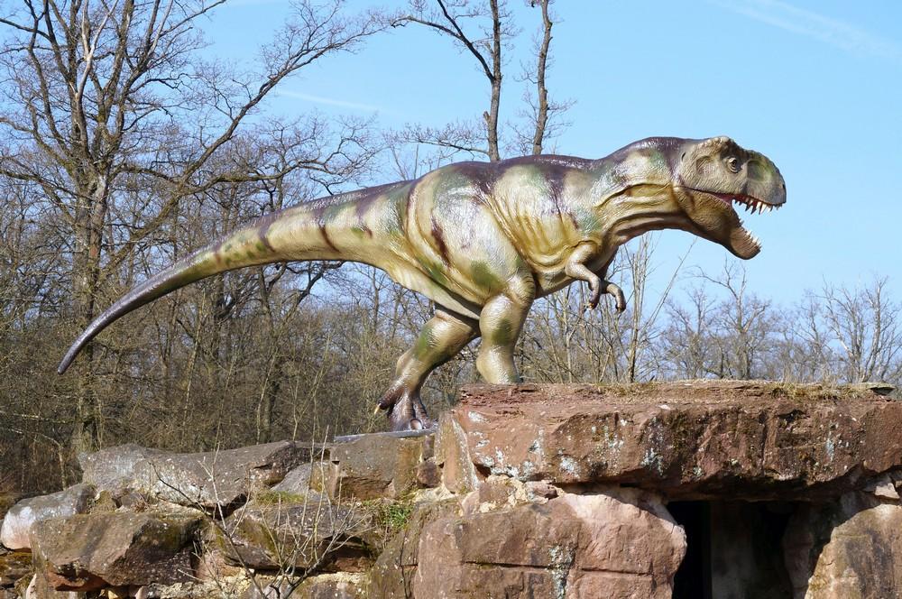 Dinosaurier Park Rex-
