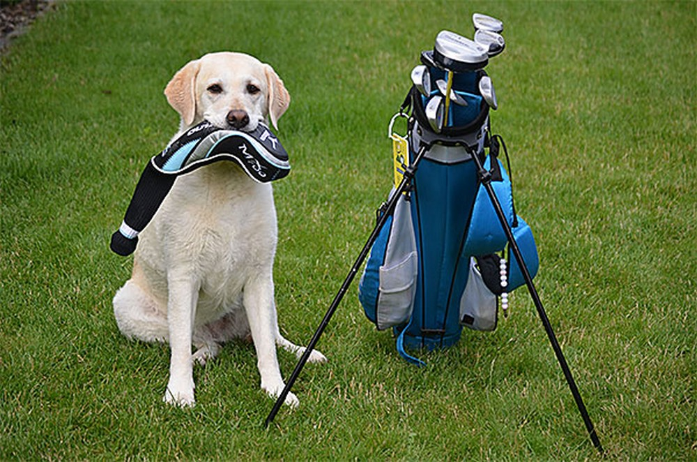 Golfclub Südeifel 4