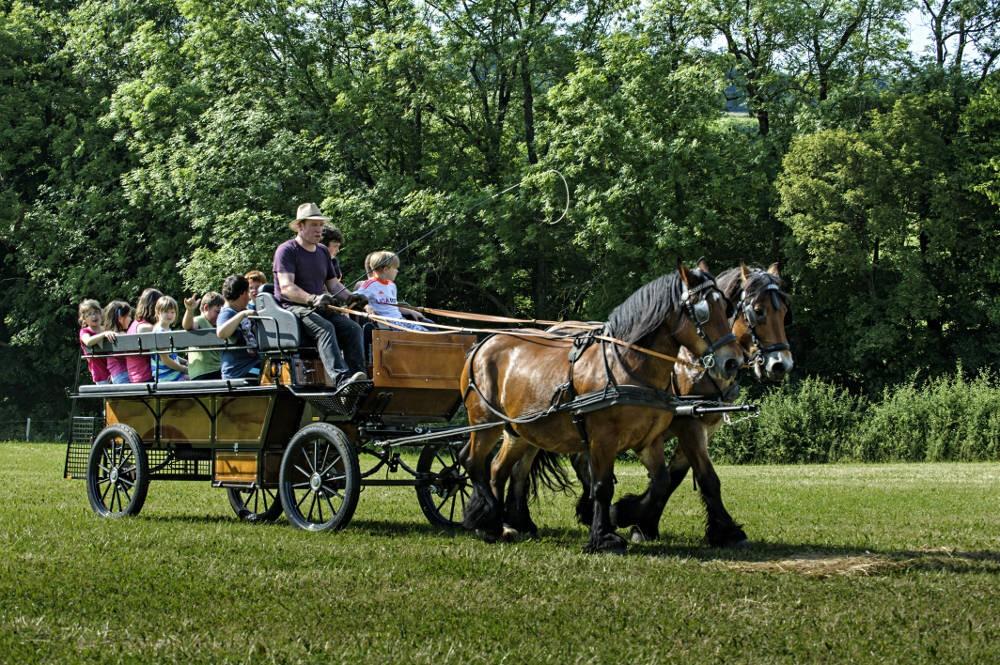 Nengshof Paardrijden 1