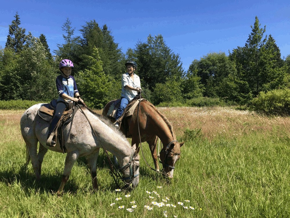 Nengshof Paardrijden 6