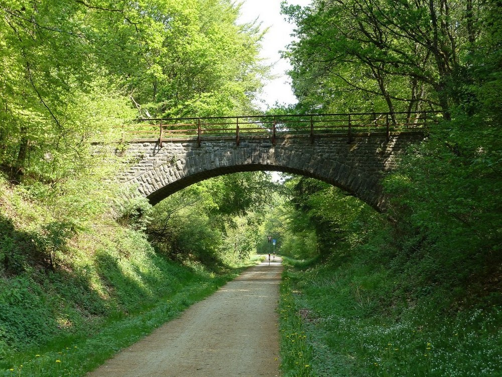 Enz Radweg 1